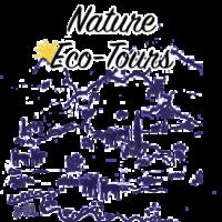 Nature-eco-icon